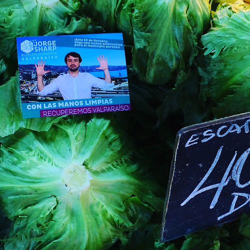 Feria Libre de Av. Argentina #Valparaíso