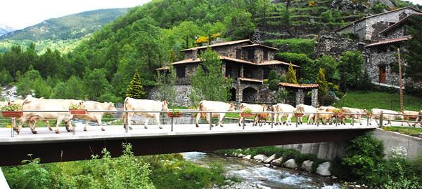 Setcases pirineo catal n vacas cruzando un puente en - Hotel en pirineo catalan ...