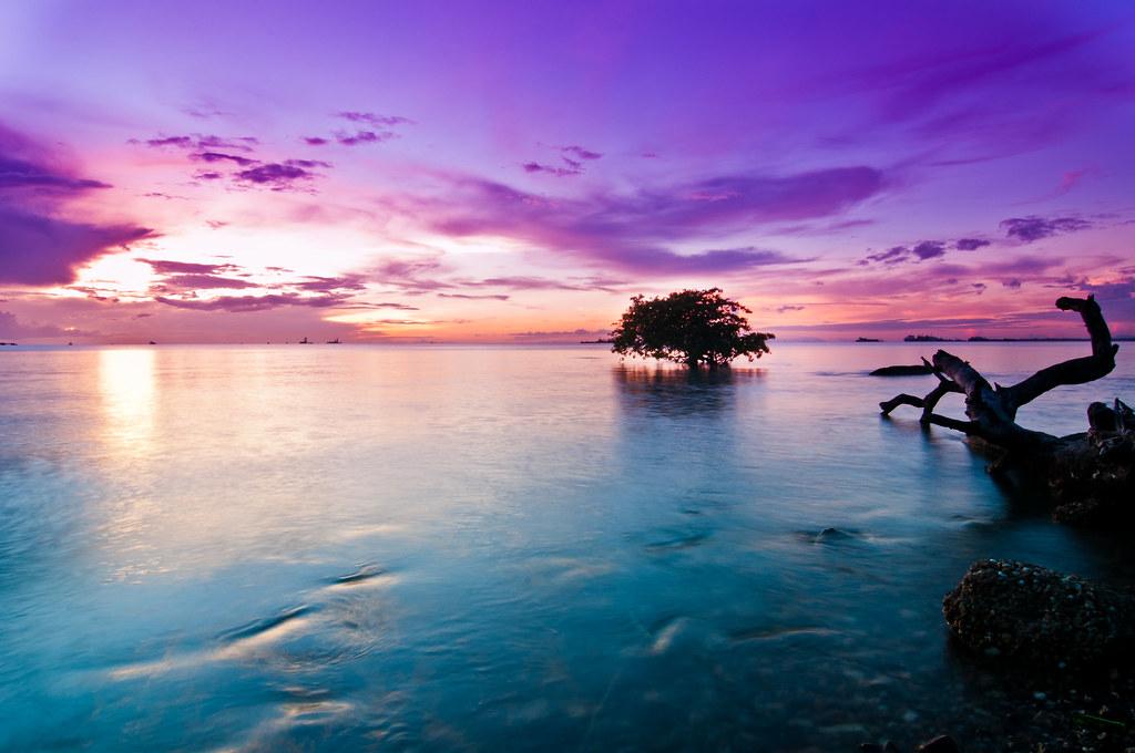 beautiful sunset   Mar...