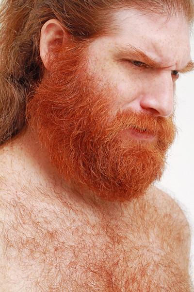 ginger beards vikings