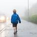 Foggy Walk to School