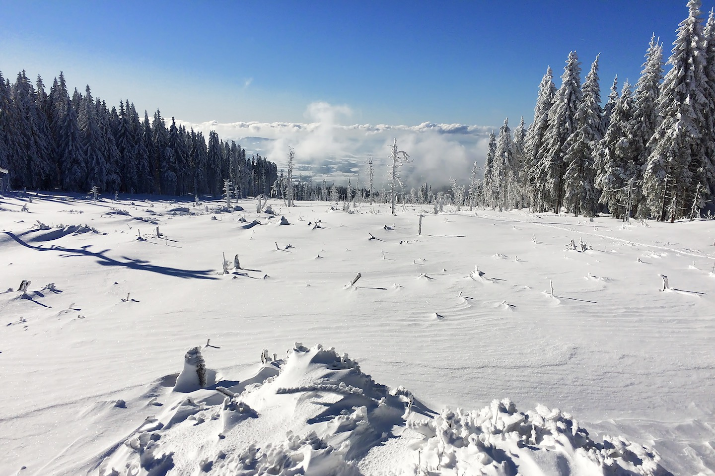 Konec sjezdu, pásy na lyže a zpátky na Zwieselberg