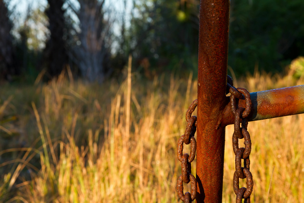 Water Colored | Subject: Old cattle gate at sunrise Camera: … | Flickr