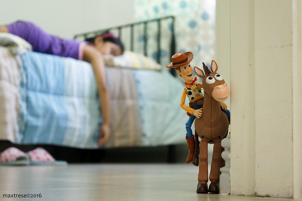 Revoltech Woody and Bullseye sneaking