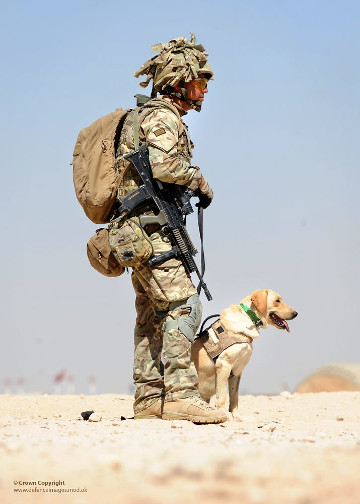 Army Dog Handler Army Dog Handler in
