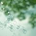 Soap bubble #14
