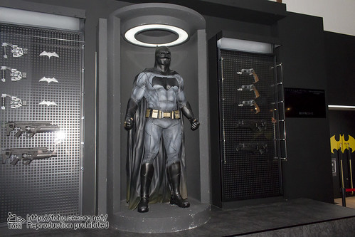 BATMAN100_HotToys_2-9