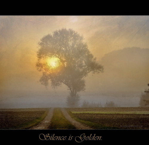 Silence is golden | by h.koppdelaney
