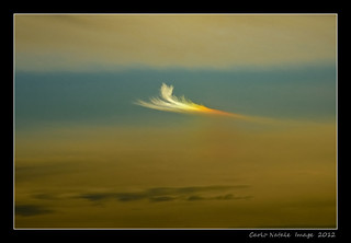 A feather in the sky | by cienne45