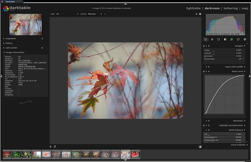 Workflow suggestions  | darktable | Flickr
