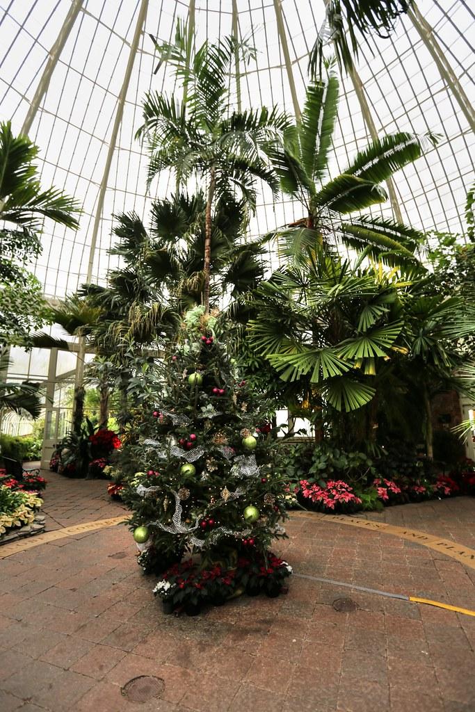 Botanical Gardens Buffalo Ny Western Ny Picture Buffalo Ny Buffalo And Erie County Botanical
