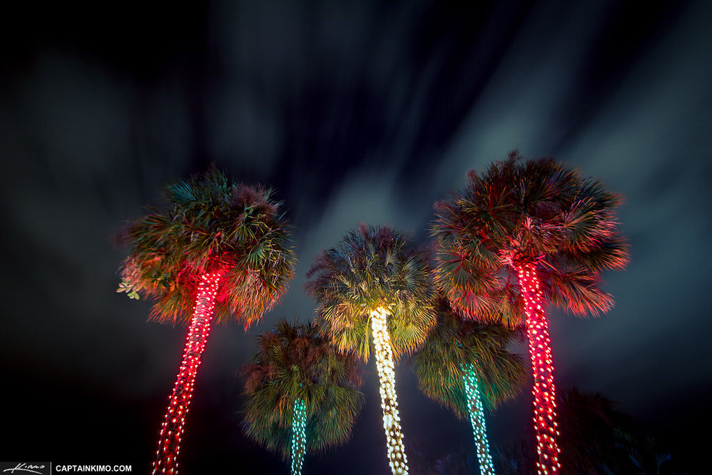 Christmas-Tree-Lights-South-Florida-Style