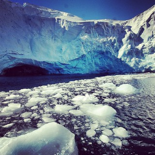 Glaciar Collins | by pruizt