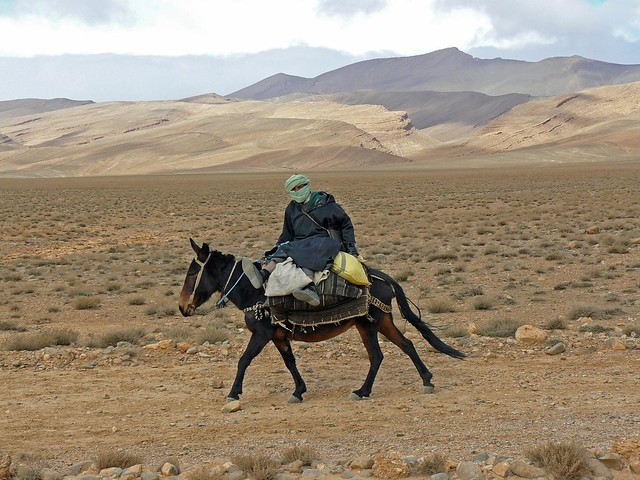 Hombre en burro en Marruecos
