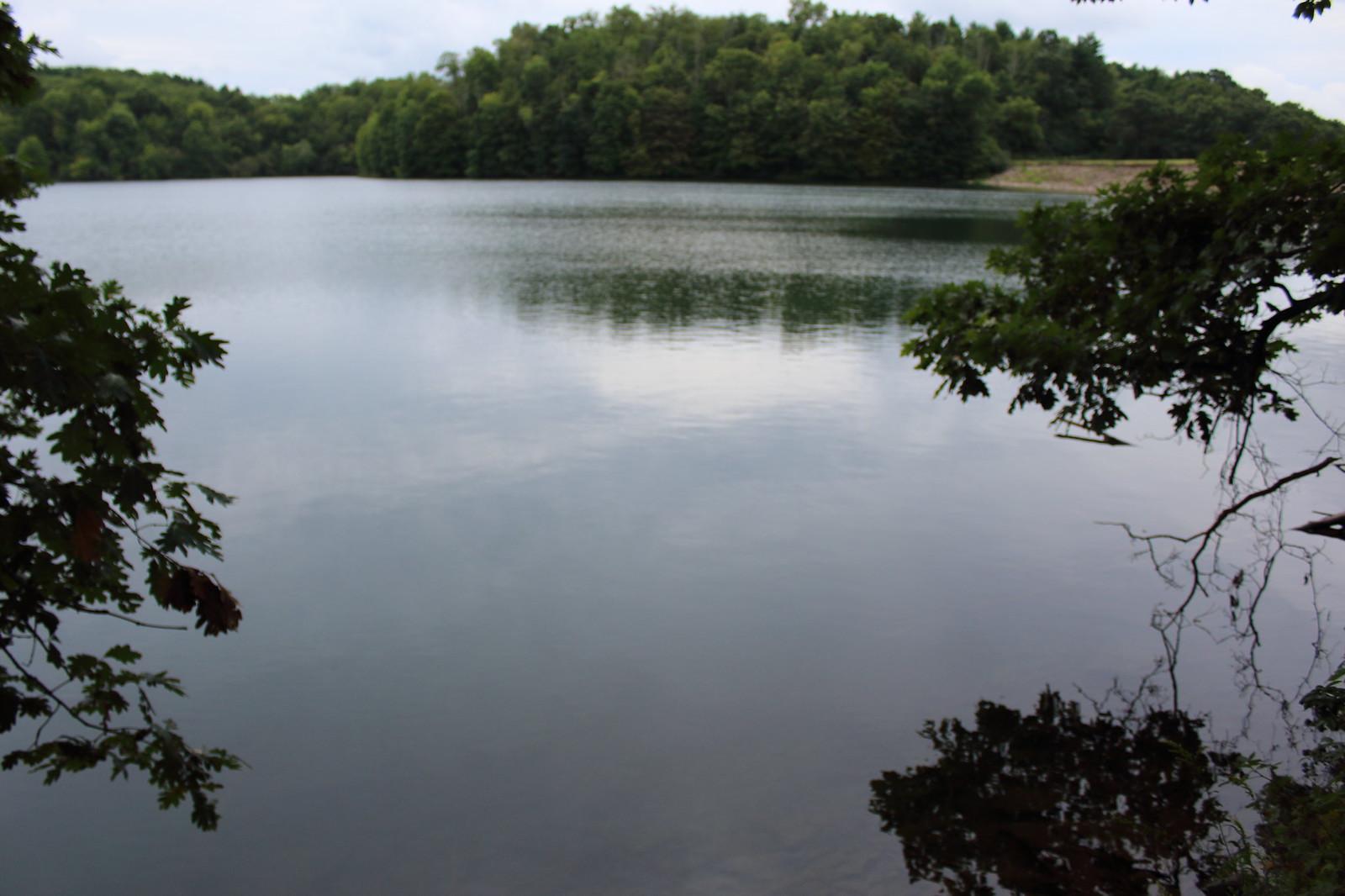 Wolf run lake 8 21 2016 fishing reports bass fishing for Wolf lake fishing