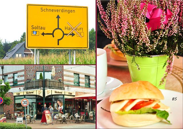 Schneverdingen - Lünburger Heide - Heidegarten - Stadtbrunnen - Fotos und Collagen: Brigitte Stolle 2016