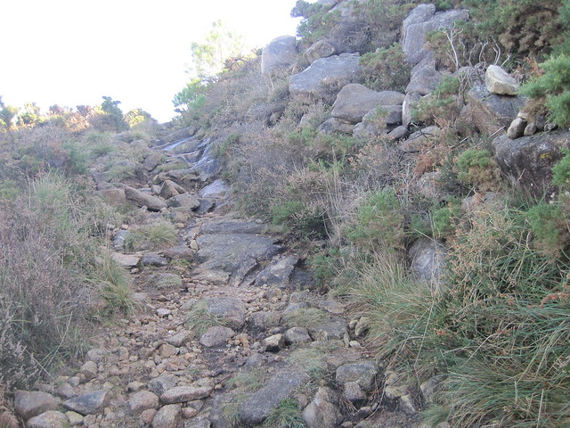 Camino empedrado en la subida al monte Pindo