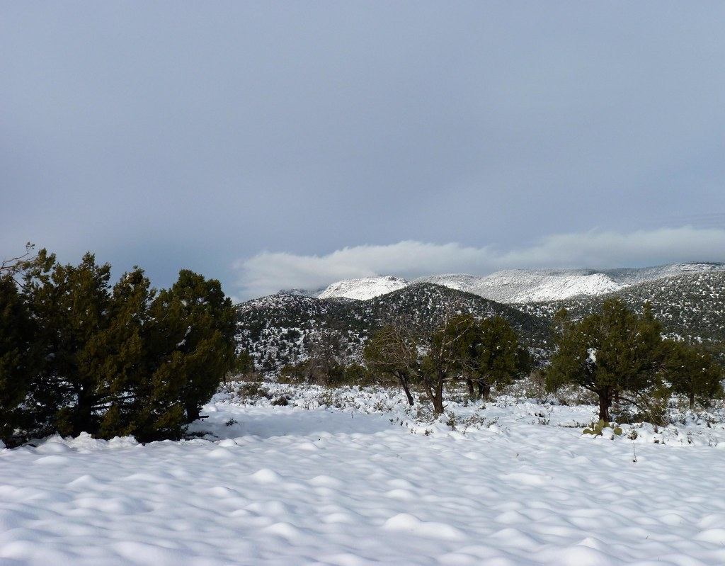 Payson Snow (4) | A light snow covers the ground and ...