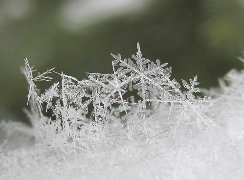 Snowflake Scupture 2 | by CaptPiper