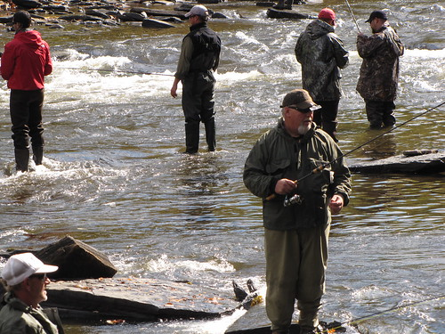 Salmon river festival fishing derby oswego county ny for Oswego river fishing report