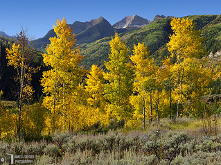 Lemon Aspens and Chair Mountain | by James L. Snyder