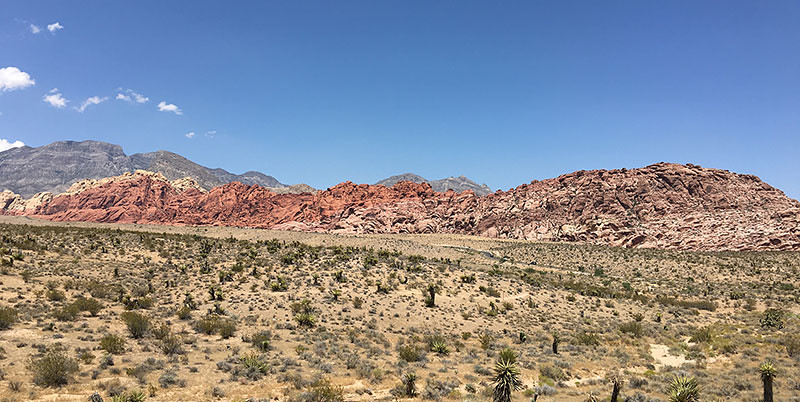 The 3 Best Places for Hikers Visiting Las Vegas