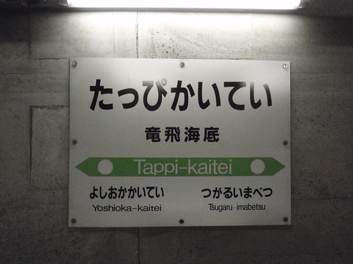 Tappi-Kaitei Station | by Kzaral