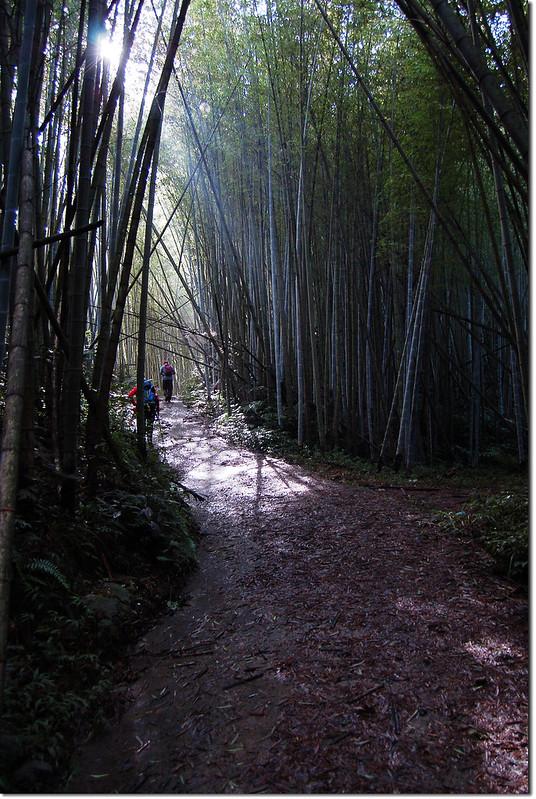 足鉾安山南峰登山步道 1