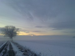 Winter im Außendeich