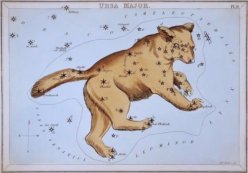 Ursa Major 1825