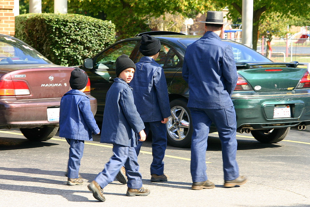 amish father and sons  arthur  illinois