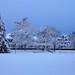 Snowfall, December 2012