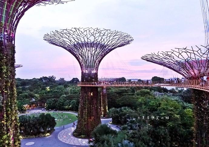27 新加坡四天三夜自由行 美食美景購物