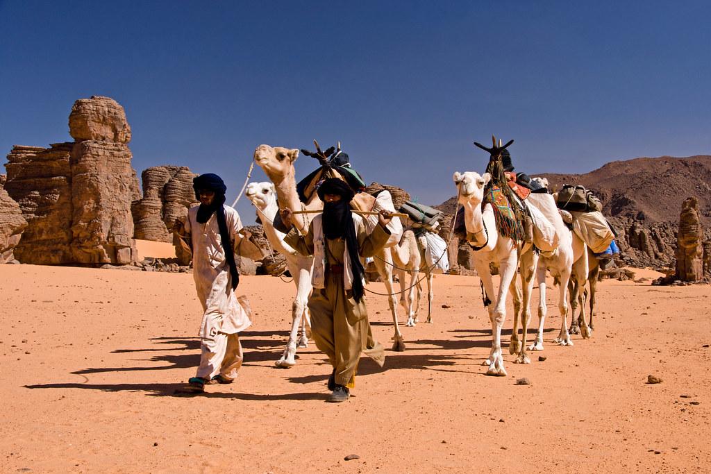 Trans-Saharan Trade Routes Hardy - Sam C - ThingLink