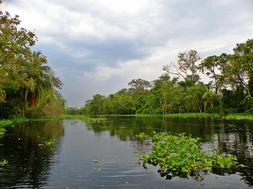 Sur Del Lago Sur Del Lago de Maracaibo