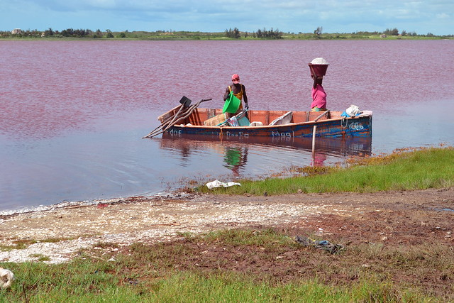 Le Lac Rose Natural Strawberry Lake of Africa