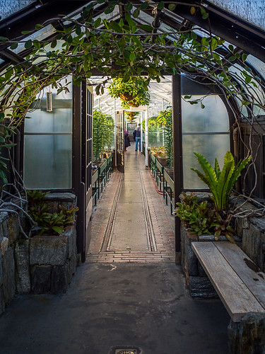 Olympus 17mm f/1.8 Test: Greenhouse Gateway | by Entropic Remnants