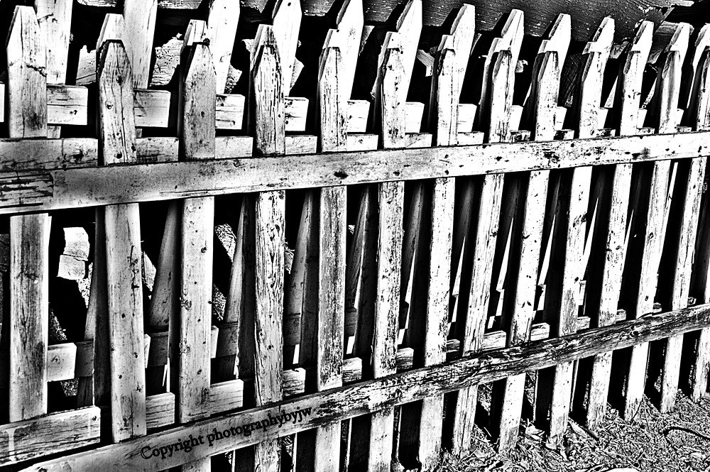 Old picket fence in black and white