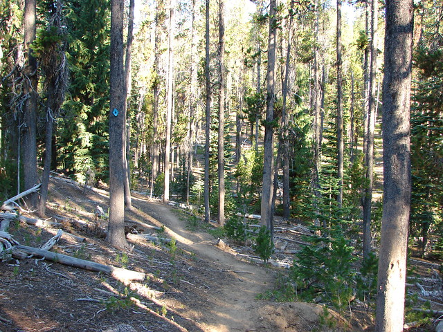 Mt. Bailey Trail