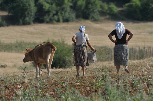 Farmers of Prespa | by UNDP in fYR Macedonia