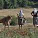Farmers of Prespa