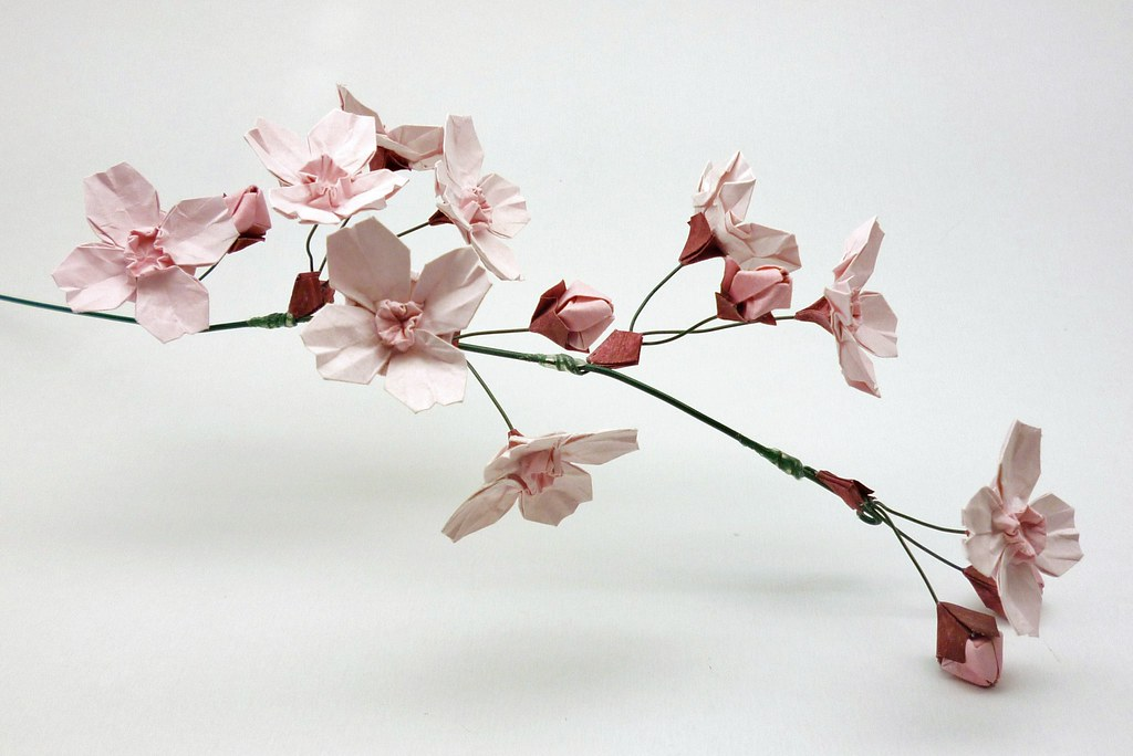 Origami Cherry Blossoms | Original design, though not a ... - photo#48