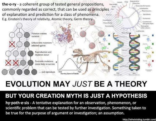 a comparison of the theories of creation and evolution Surprising similarities between creation & evolution by john upchurch on march 22,  creation or evolution do you know where creationists and evolutionists agree.