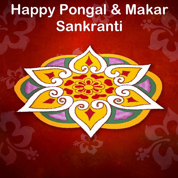 Happy Pongal and Makar Sankranti, everyone :-) #pongal #makarsankranti ...