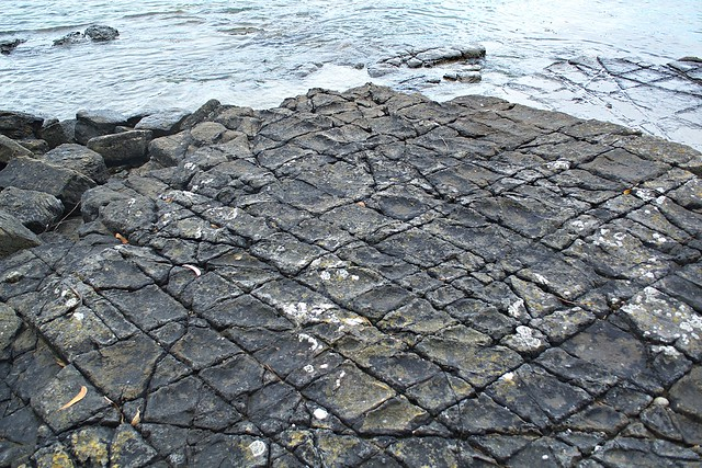 Rock tessellations pirates bay tasmania flickr photo for Landscaping rocks tasmania