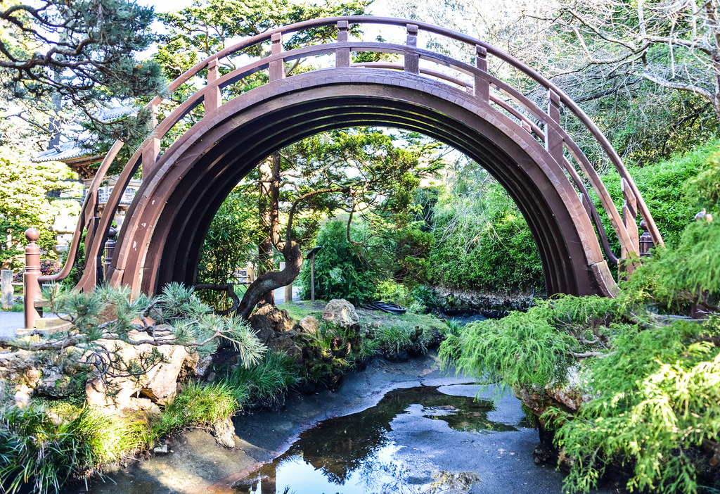 drum bridge at the japanese tea garden in golden gate park san francisco ca by - Golden Gate Park Japanese Tea Garden
