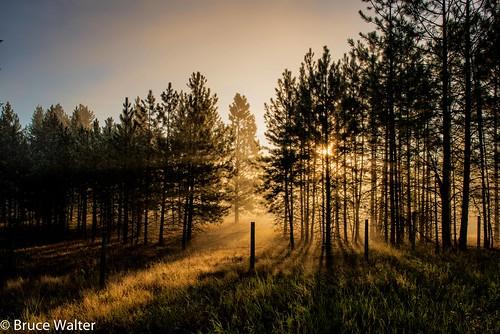 BW72710-Edit | Sunrise Cranbrook B.C | Bruce Walter | Flickr: https://www.flickr.com/photos/bdwalter/28588398104