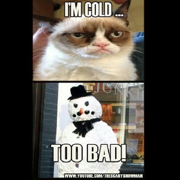 Grumpy Cat Cold Weather Meme