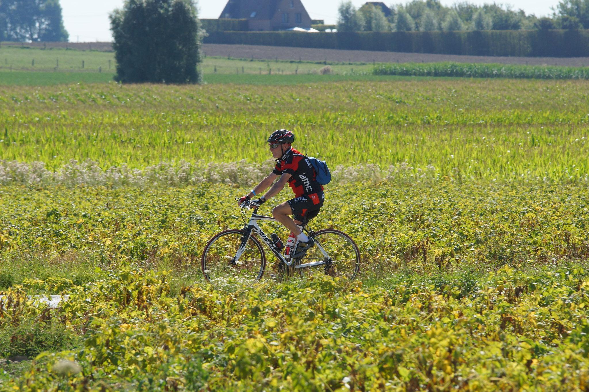 West-Vlaanderens Mooiste op donderdag