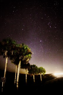 Starry Night in Gainesville, Florida | by Bradley Easom